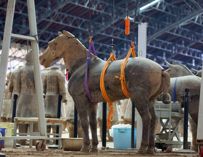Xian, China - March 26, 2016: A damaged horse being repaired and is hoisted up by hand crane at the Terracotta Warriors Museum
