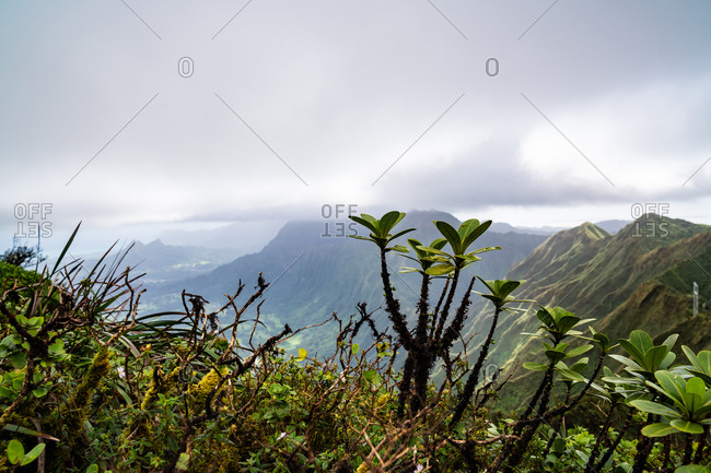 The view from Stairway to Heaven on Oahu, Hawaii
