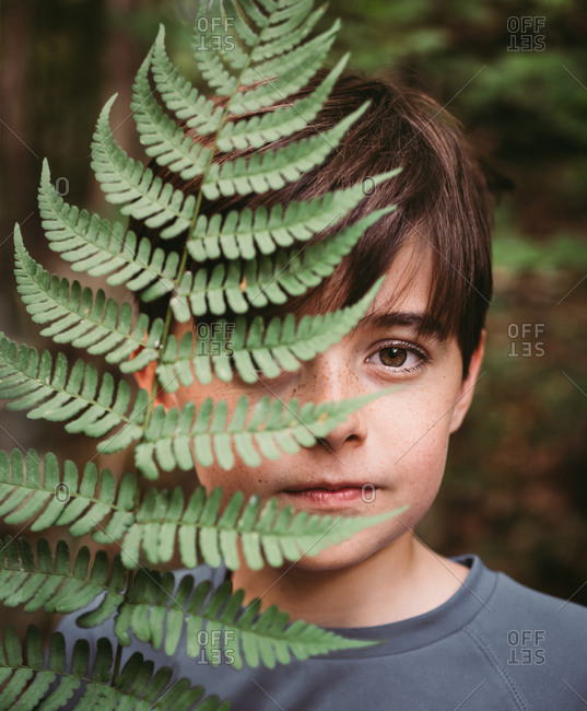 Portrait of young boy covering half of his face with a fern leaf.