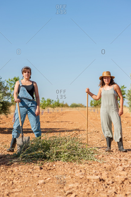 Women in overalls and rubber boots using rake for harvesting dried grass while having fun in village in summer