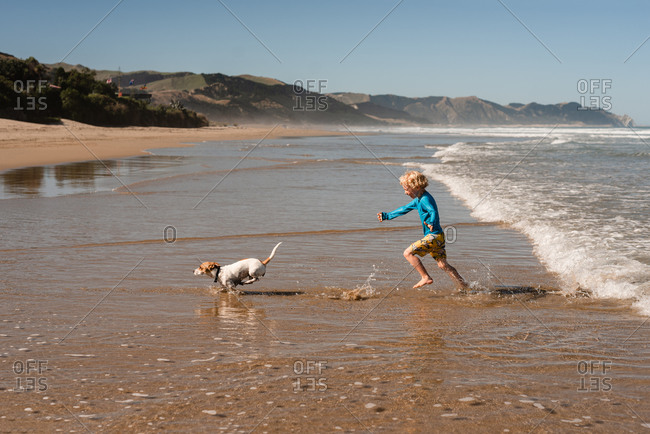 Happy young child playing with small dog at a beach in New Zealand