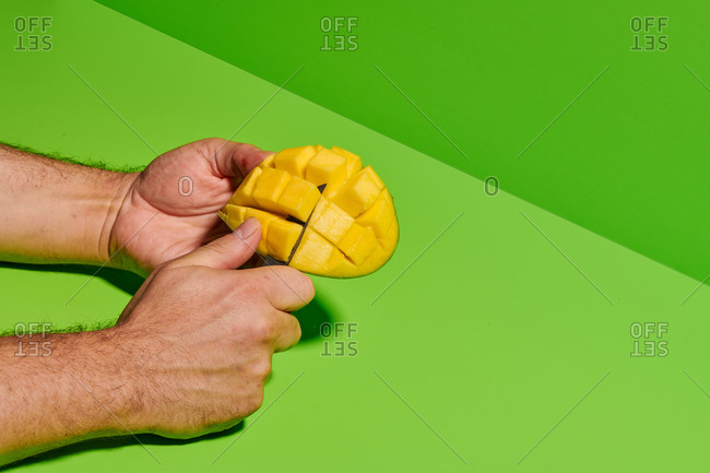 Crop unrecognizable male cutting and peeling fresh ripe juicy mango fruit against bright green background