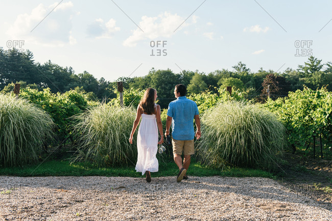 Stylish young couple laughing and walking into vineyards with wine