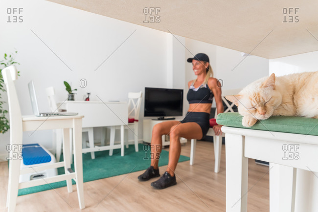 Adorable kitty relaxing in living room on background of fit female watching online tutorial and training at home