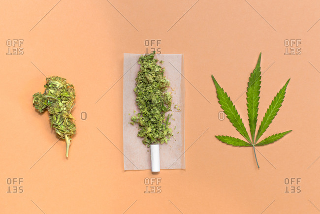 Marijuana bud, leaf and joint ready to roll.