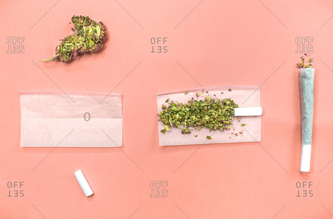 Steps and materials to roll a marijuana joint on pink background.