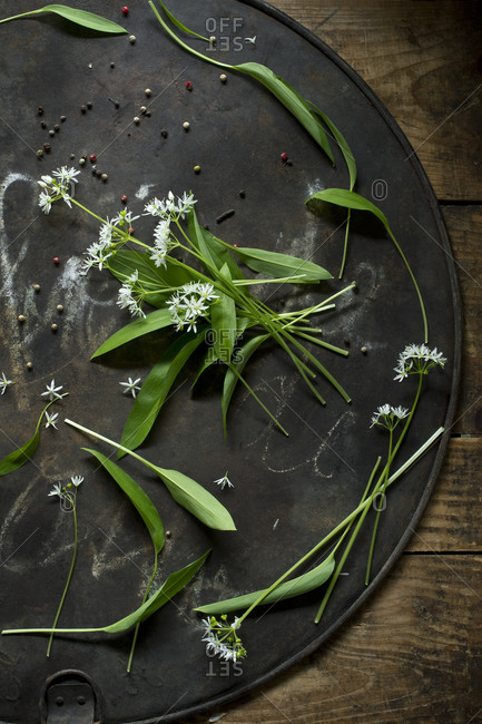 Ramson and peppercorns on rustic baking sheet