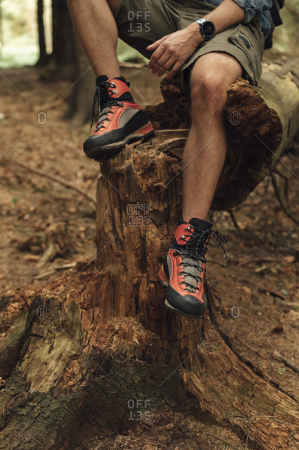 Close-up of mid adult man legs wearing hiking boot while sitting on wood in forest