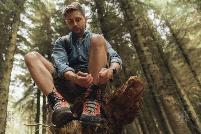 Mid adult man tying shoelace while sitting on wood against trees in forest