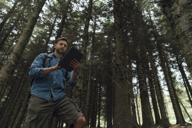 Man checking GPS over digital tablet while standing against trees in woodland