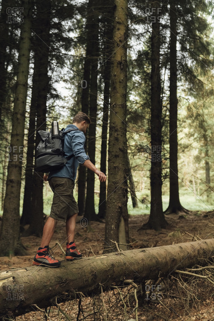Male hiker with backpack walking on log against trees in woodland
