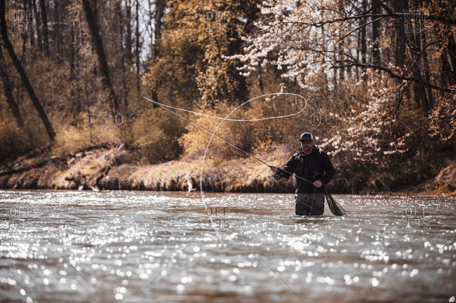Fly Fisherman casting fishing line while standing in river at forest