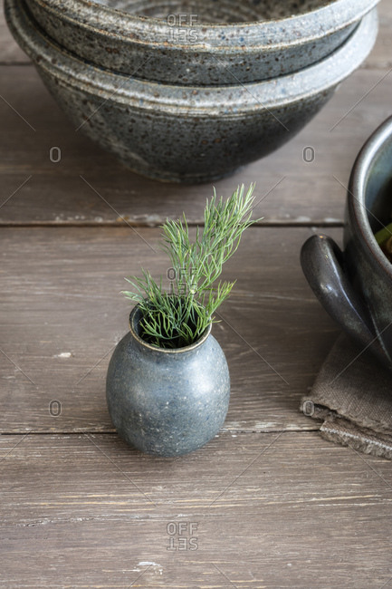 Small ceramic vase with fresh dill