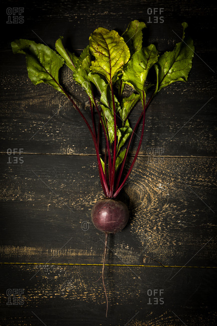 Common beet on wooden surface