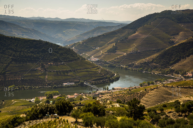 Scenic view of terraced hills surrounding river Douro