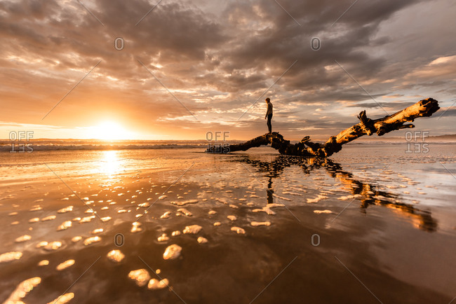 Tween girl climbing on a large piece of driftwood on beach at sunset