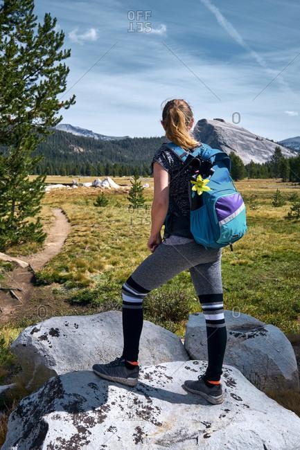 USA, United States of America, Tioga Pass, Yosemite National Park, Sierra Nevada, Tuolumne Meadows, California