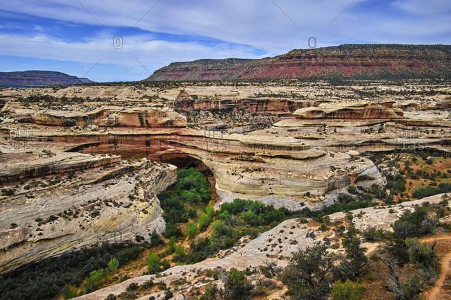 USA, United States of America, Utah, Arizona, Bridges National Monument, San Juan Country, Utah, Colorado Plateau, White Canyon, Armstrong Canyon,