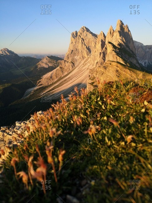 Seceda and Dole peaks in the evening light, close to the ground,