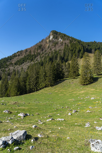 Europe, Germany, Bavaria, Chiemgau, Bavarian Alps, Heuberg, Inntal,