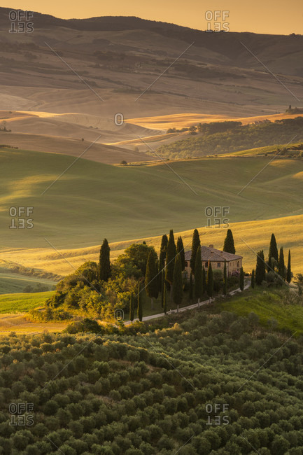 June 20, 2020: Europe, Italy, Val d'Orcia, San Quirico, Pordere Belvedere, Agritourismo, Tuscany, Tuscan Landscape