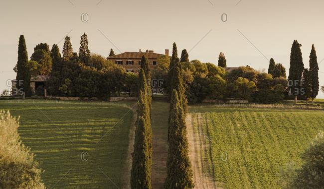 June 20, 2020: Europe, Italy, Val d'Orcia, San Quirico, Genna Borborini Maria Eva, Agritourismo, Tuscany, Tuscan Landscape