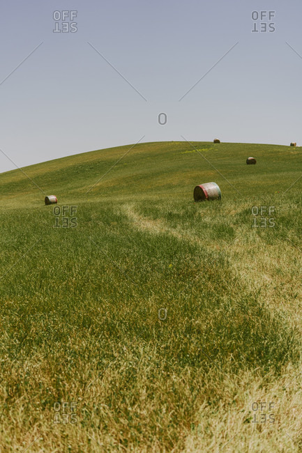Europe, Italy, Tuscany, Tuscan Landscape, Province of Siena, Castiglione D'orcia, Hay Balls on field,