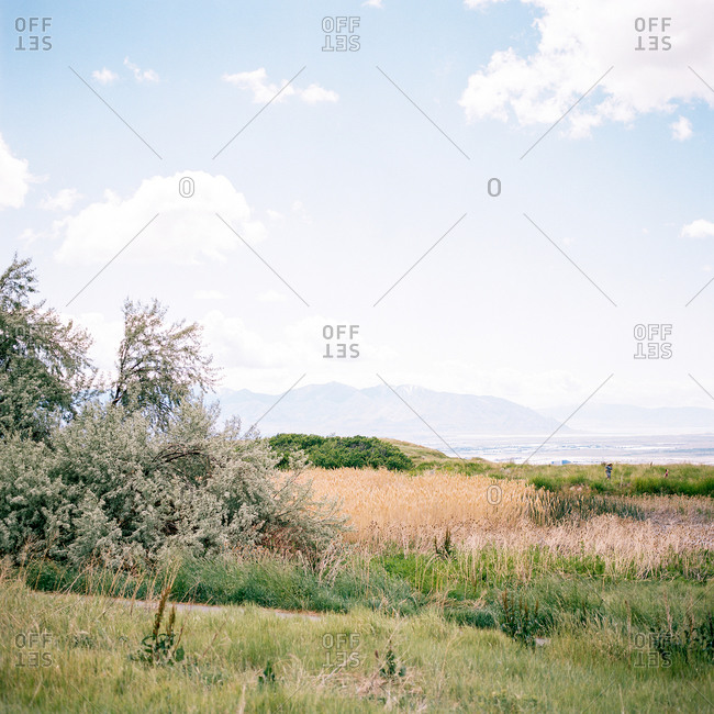 Rural landscape with mountains in the distance in Utah, USA