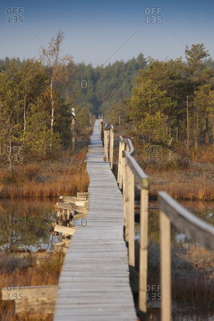 Wooden Boardwalk over Marsh with sky