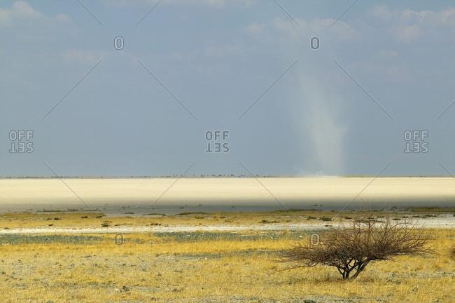 View across the Makadikadi Salt Pans in Botswana.