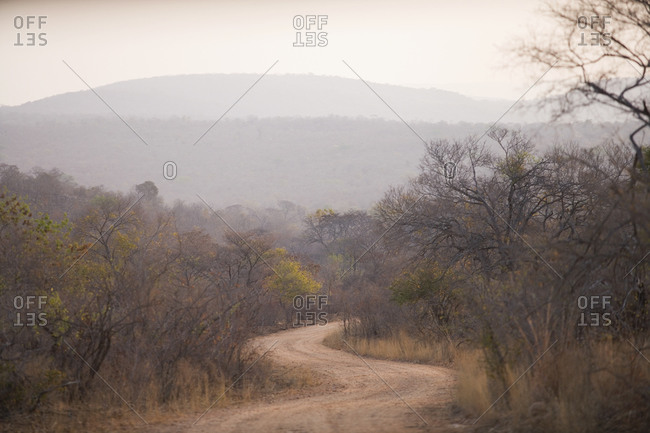 View along winding rural road, Southern Africa.