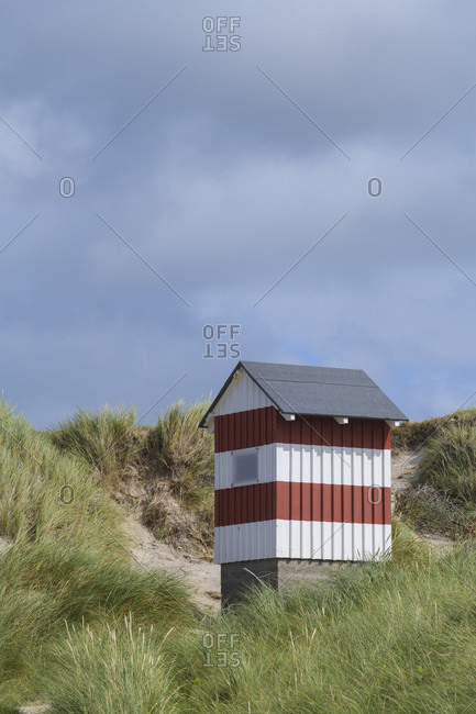 Small house as a sea mark in the dunes, vorupor, national park thy, thirsted, north sea, north Jutland, Denmark