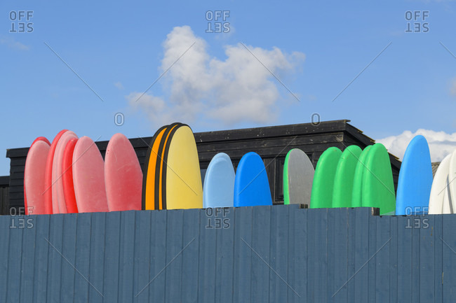 Colorful surfboards, Kitzmiller, national park thy, north sea, north Jutland, Denmark