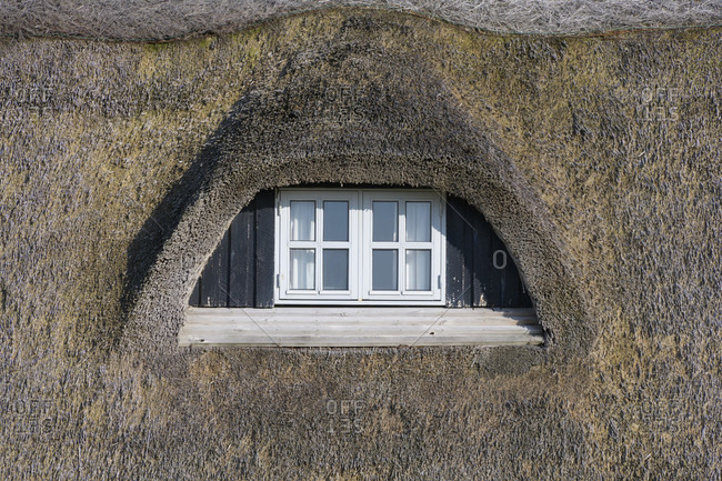 Dormer window of a thatched house, Kitzmiller, national park thy, north sea, north Jutland, Denmark