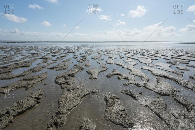 North sea beach at low tide, room, room, tonder kommune, syddanmark, southern Denmark, Denmark