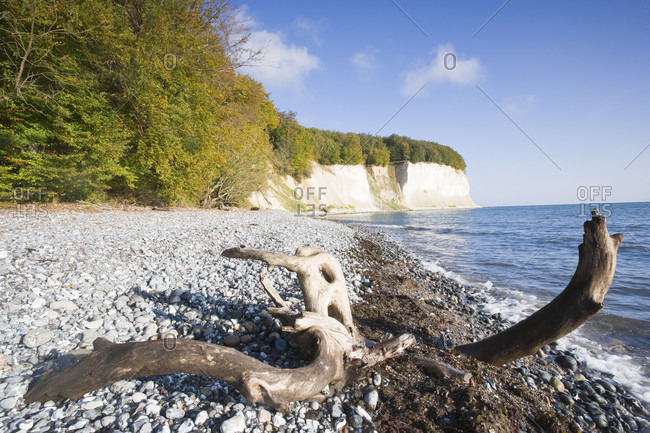 Chalk cliffs on isle of ruegen, jasmund national park
