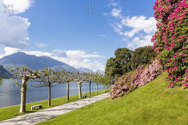 Park at villa melzi, bellagio, lombardy, italy