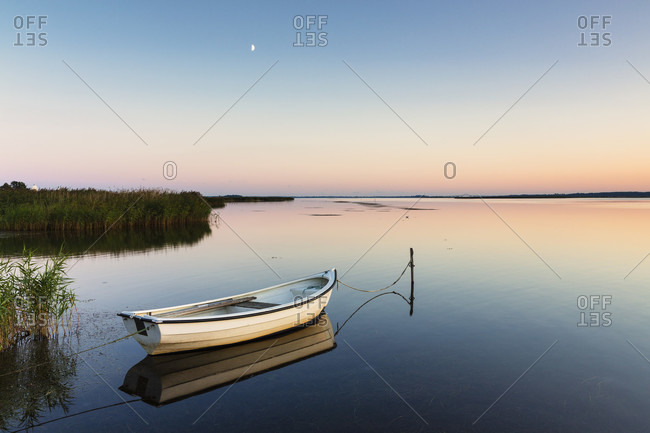 Rowing boat is moored by a reed belt at dusk, blue hour, mon island, seeland region