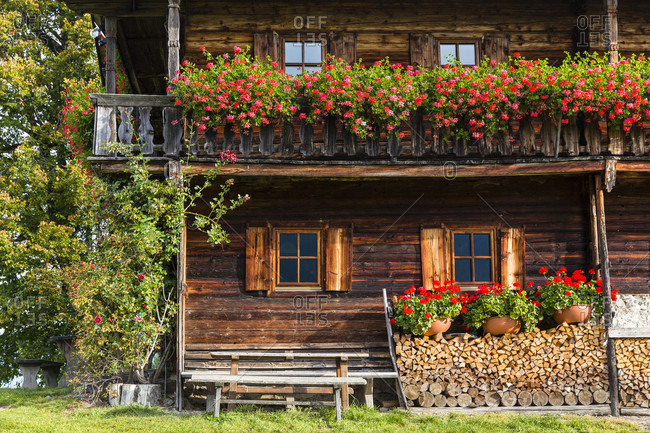 Traditional wodden farm building with its typical geranium flower boxes near the mountain range 'wilder kaiser'