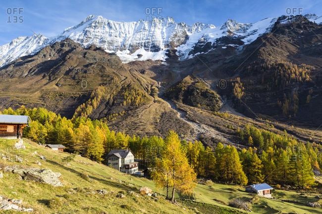 Alp in autumnal landscape in front of breithorn (3.785 m), loetschental, jungfrau region, unesco world heritage region, autumn
