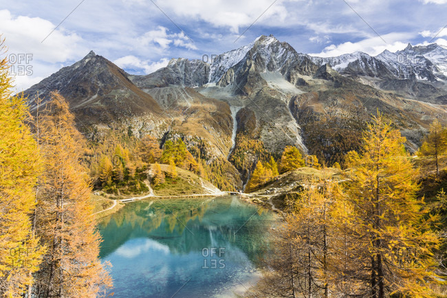 Colorful larch trees at lac bleu with dents de veisivi (3.418 m) in the background, autumn, val d'arolla