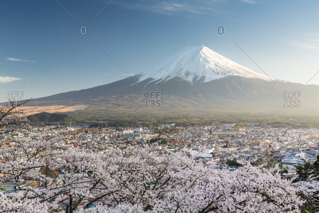 Chureito pagoda and blooming cherry trees in the hills of fujiyoshida in front of mount fuji, sunset, arakura-yama sengen-koen park