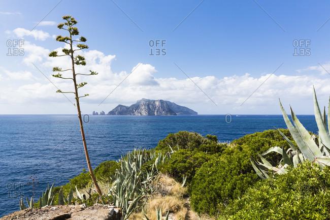 View of capri from the sorrento coast, punta campanella