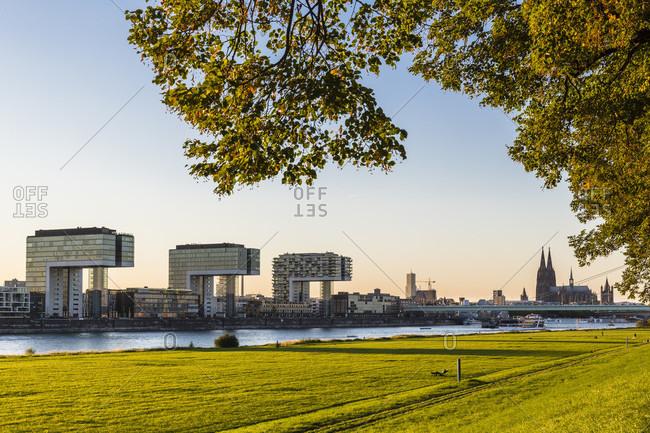 October 1, 2015: Green belt at the river rhine in front of the crane buildings (kranhaeuser) at sunset