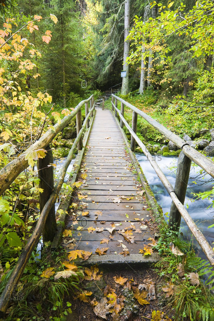 Wooden bridge crossing a creek, autumn
