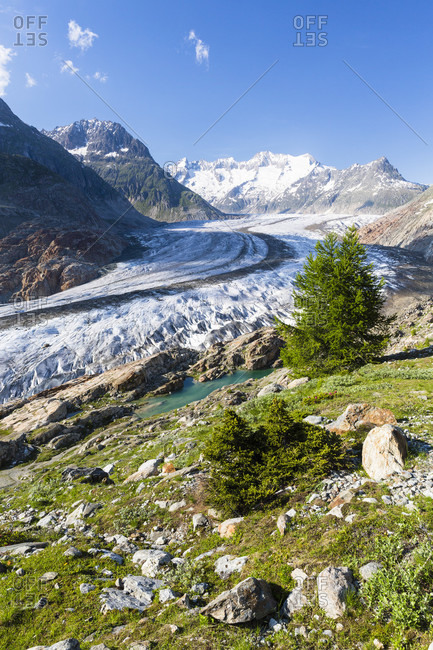 Swiss alps aletsch glaciers aginst mount wannenhorn (3906m), unesco world heritage, rhone valley