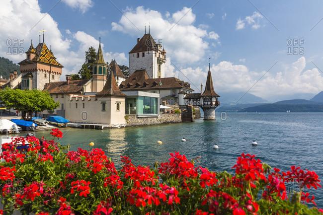 June 2, 2018: Gernaium flowers in front of oberhofen castle at lake thun
