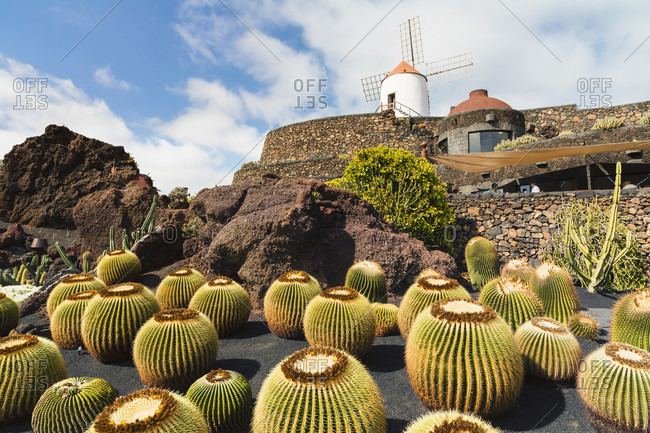 Jardin de cactus, a garden with a wide range of various cacti from all over the world