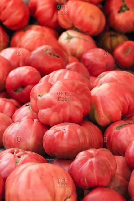 Ripe beef tomatoes at the market, padova, italy