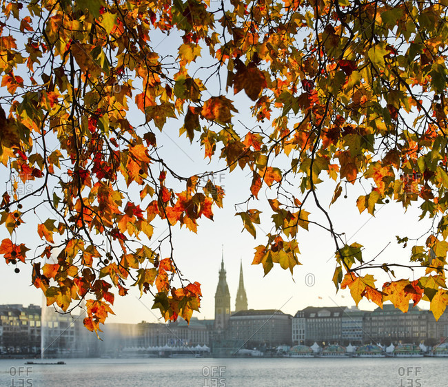 Autumn at the inner alster in hamburg